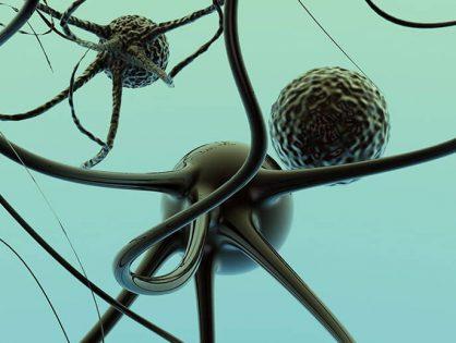 É Possível Prevenir o Envelhecimento Cerebral